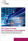 The Future of Trade: The Challenges of Convergence